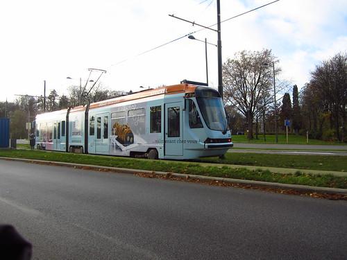 Tram Picard