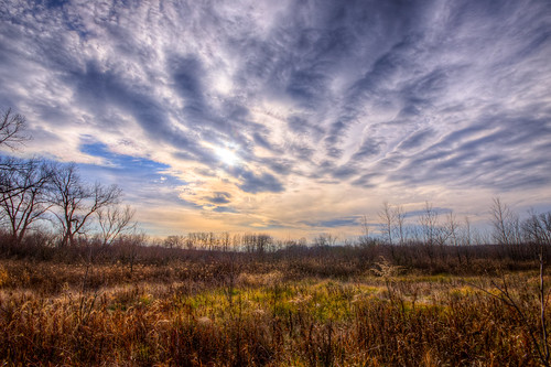 park november blue autumn trees shadow wild sky brown sun fall nature field grass weather wisconsin clouds landscape photography photo weeds state image pentax deep brush photograph area preserve scrub depth hdr 2012 k5 sigma1020mm photomatix tonemapped sigma1020mmf456exdc