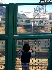 電車を見ます (2012/11/25)
