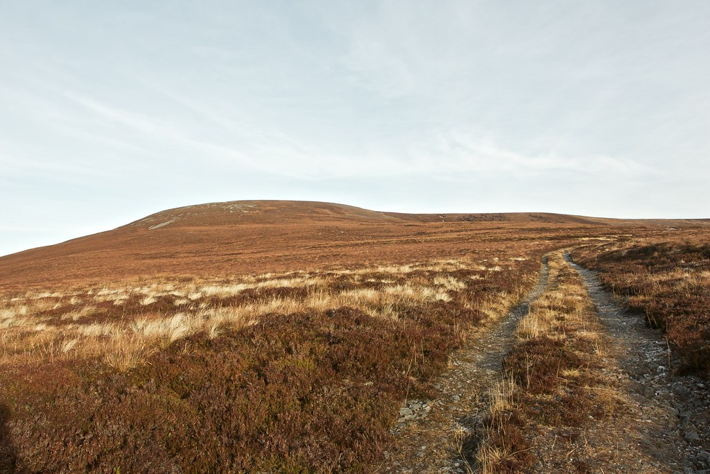 Track to Cook's Cairn