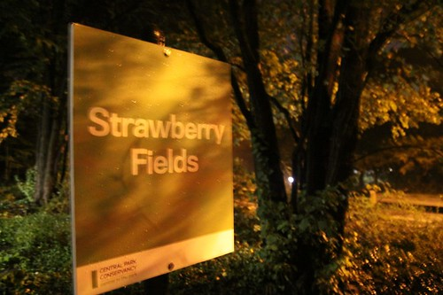 Strawberry Fields at night