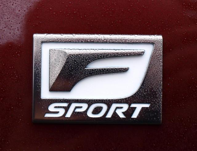 2013 Lexus RX 350 AWD F Sport 6