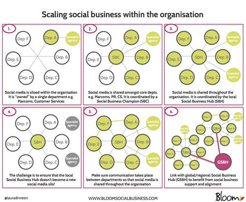 Scaling social business within the organisation