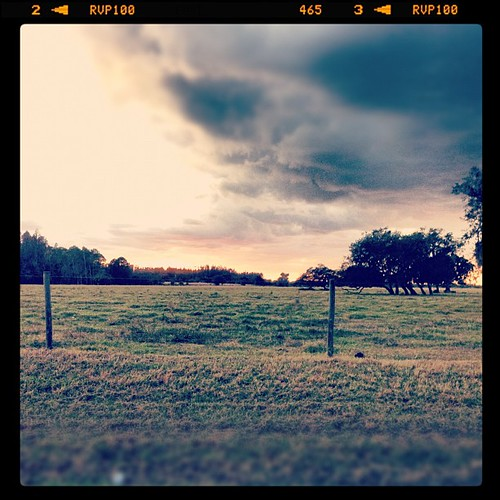 nature beauty sky clouds iphoneography view vintage trees sunset fence cloudy field