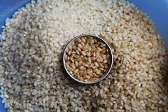 vegetable, food grain, barley, rice, vegetarian food, whole grain, produce, food, white rice, cereal,