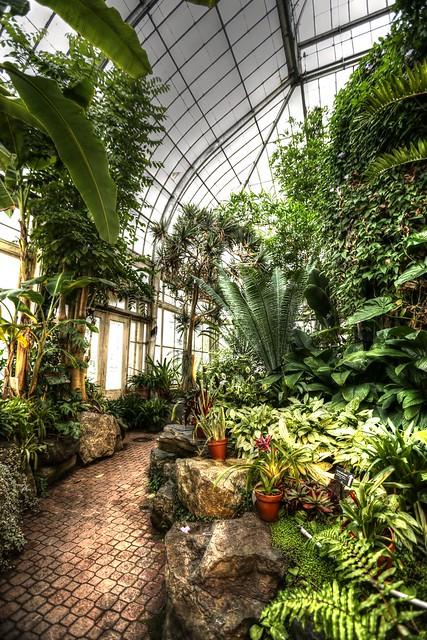 2012 December 07 Botanical Gardens Buffalo Ny Flickr Photo Sharing