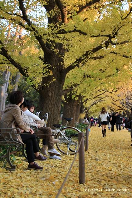 20121206_XmasTokyo_1450 f