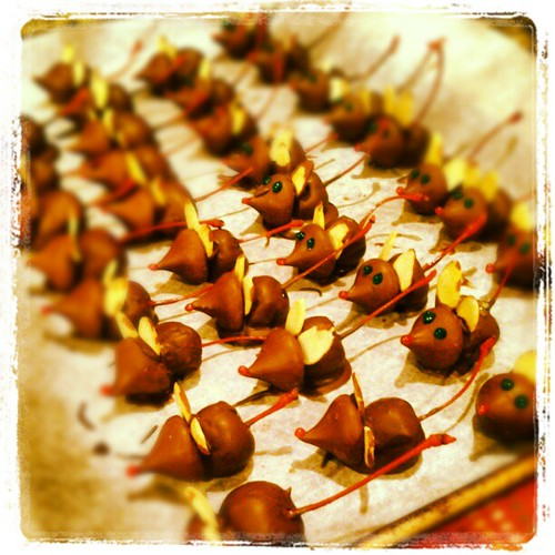 Chocolate meeces