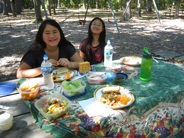 Picnic in Lindbergh State Park