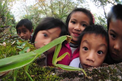 孩子們觀察自然,不一樣的視野