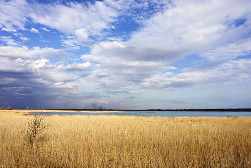lake nature yellow cane clouds landscape pond nikon scenery europe serbia wetlands d200 plain vojvodina srbija banat carskabara protectedreserve