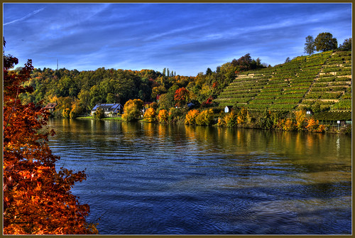 Vineyards by the river by FocusPocus Photography
