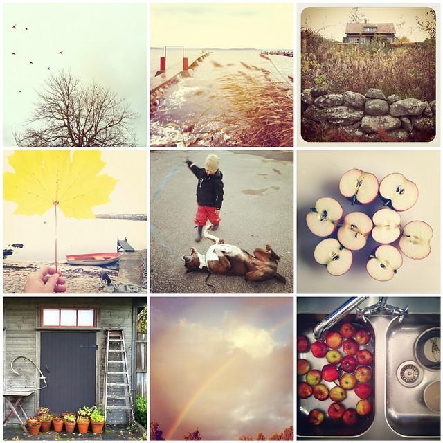 instagram hösten 2012