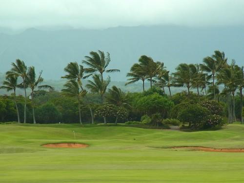 Kauai Lagoon Golf Club 424b