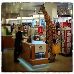Even giraffes go shopping  #edinburgh #johnlewis #stjames #giraffe