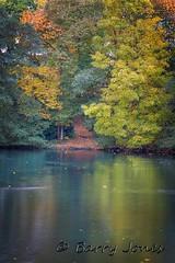 aultumn-lake