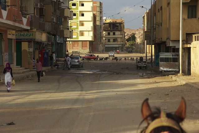 361 - Paseo en calesa en Aswan