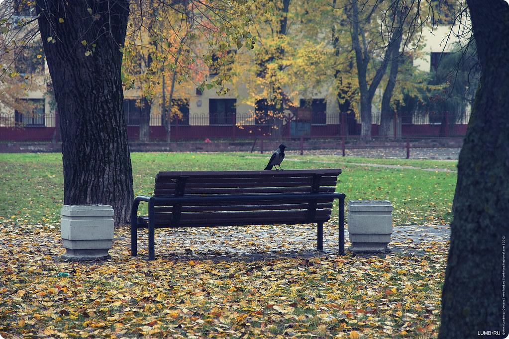 2012.10.21 сингулярность