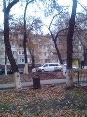 IMG_20121107_155439