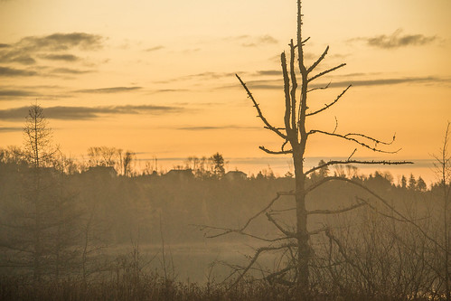 lake fall sunrise dawn nikon novascotia ns fallcolors halifax hrm beaverbank nikond3100 beaverbankns