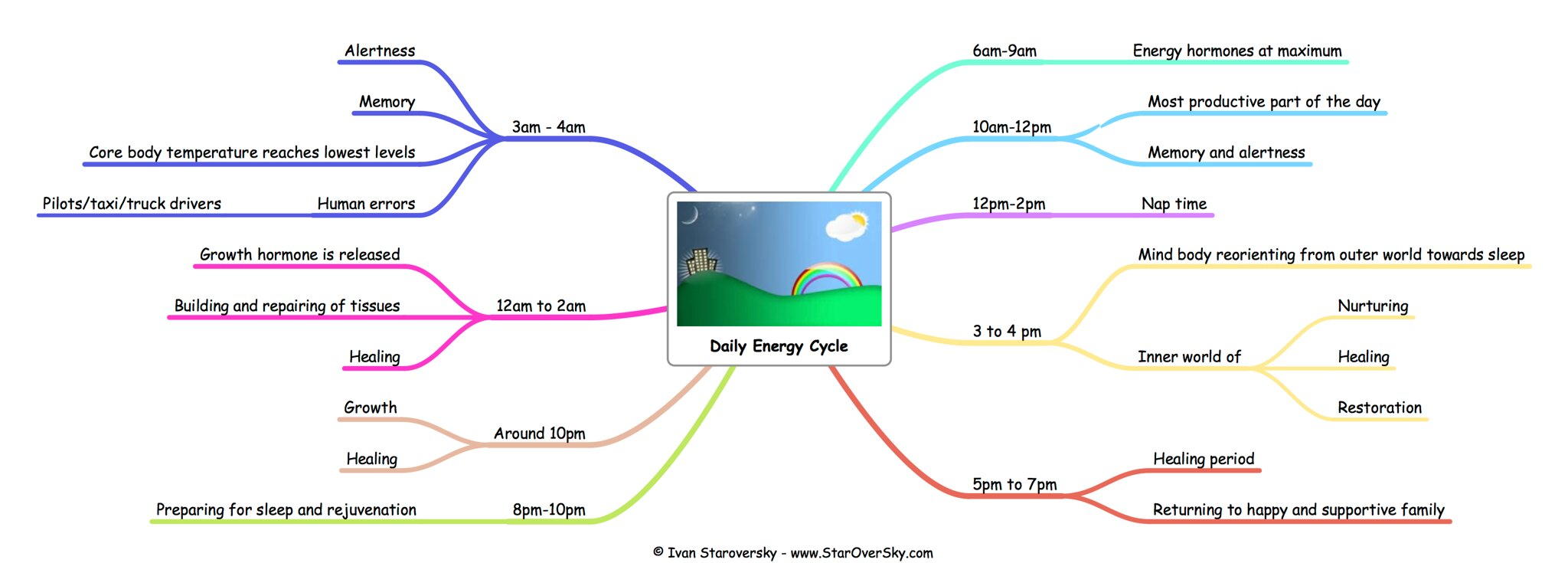Daily Energy Cycle