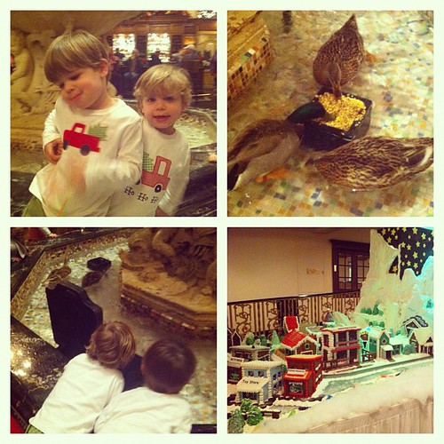 Fun day seeing the ducks march at the Peabody.