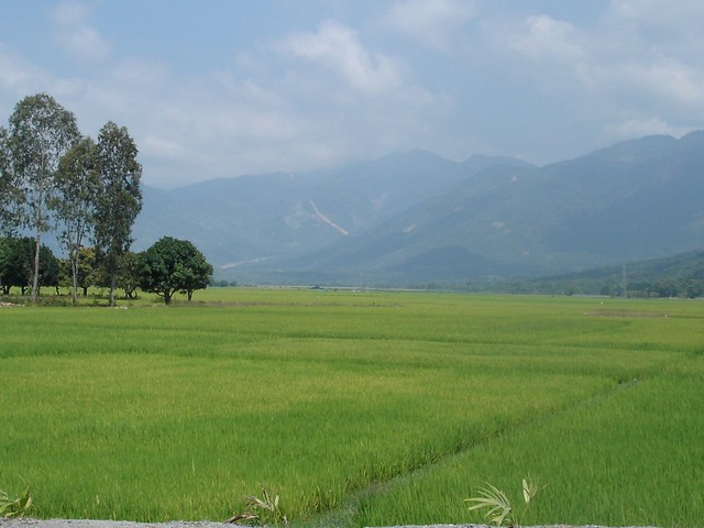 Laos-rice-fields-and-mountains-Flickr-CC-dancingqueen27