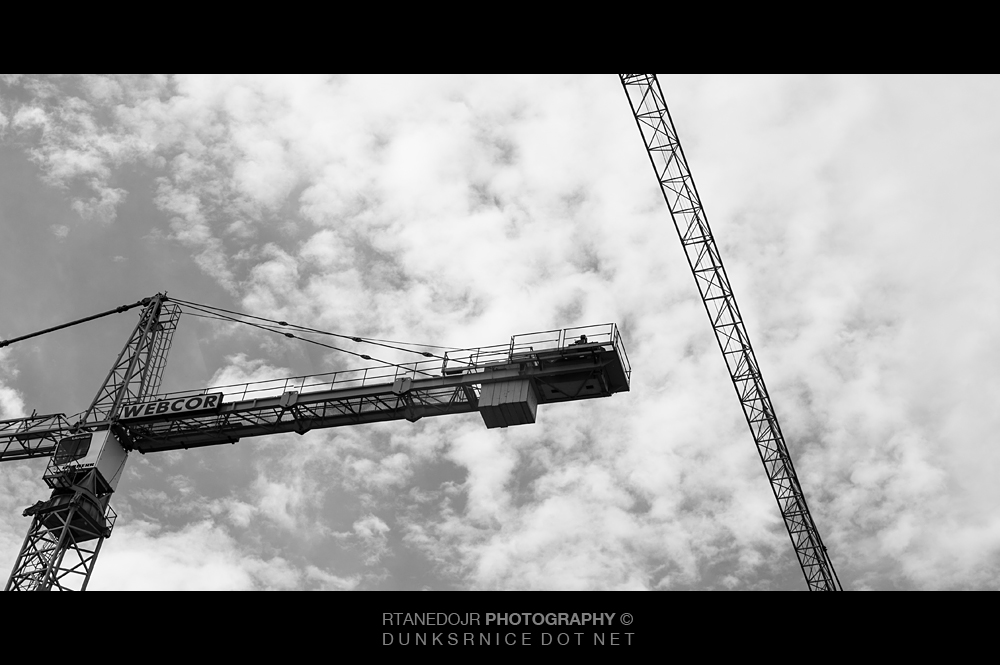 Cranes B&W.