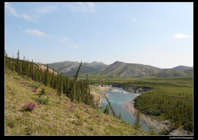 Firth River, Yukon