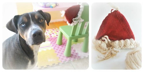 chewed christmas hat collage