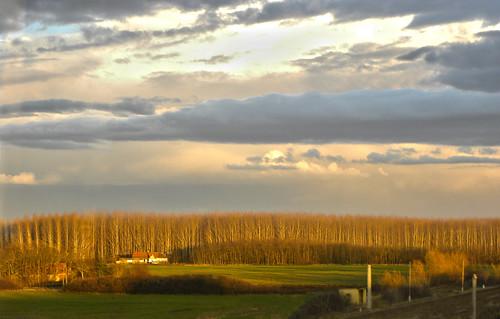autumn cloud storm bus green fall sunshine yellow clouds forest nikon hungary coolpix felhő p90 vihar magyarország busz felhők zöld sárga ősz erdő napsugár békésmegye nikonp90 lastsunshinesofautumn lastsunshineofautumn azőszutolsónapsugarai azőszutolsónapsugara