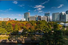 Tokyo skyline view