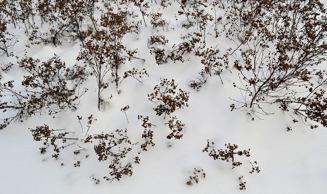 snö 018muok