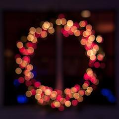 Holiday Lights [339/366]