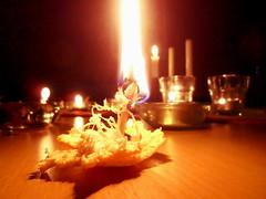Ljus fest