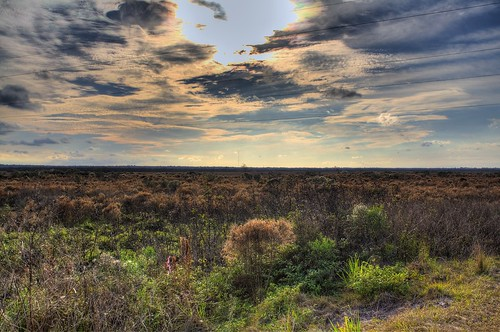 horses nature clouds landscape florida gainesville prairie hdr paynes