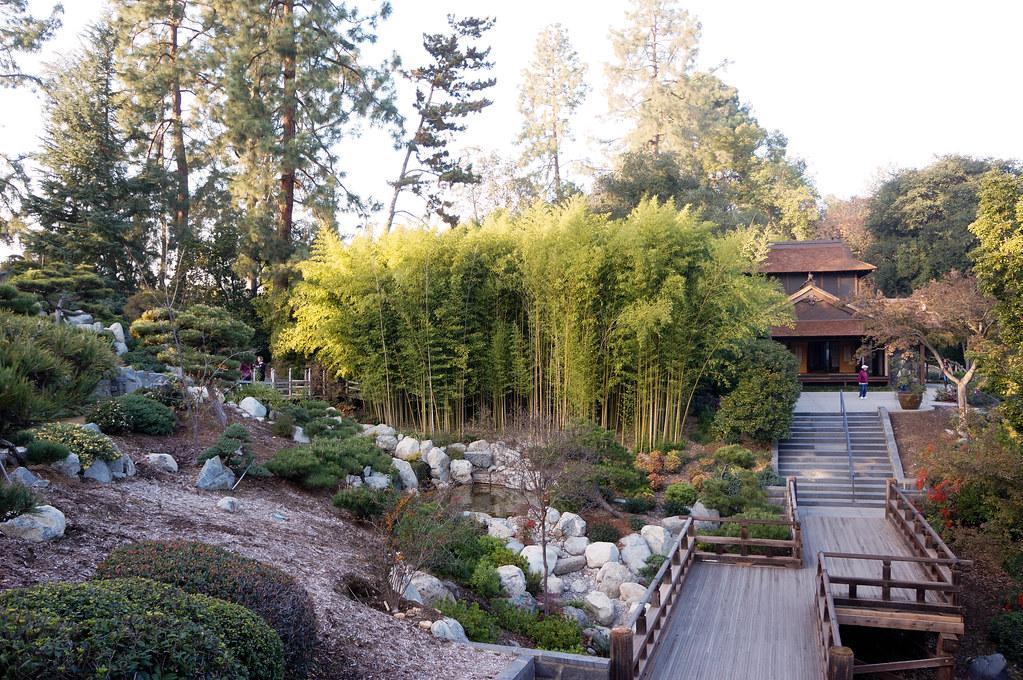 The Huntington Botanical Gardens Landscape Voice
