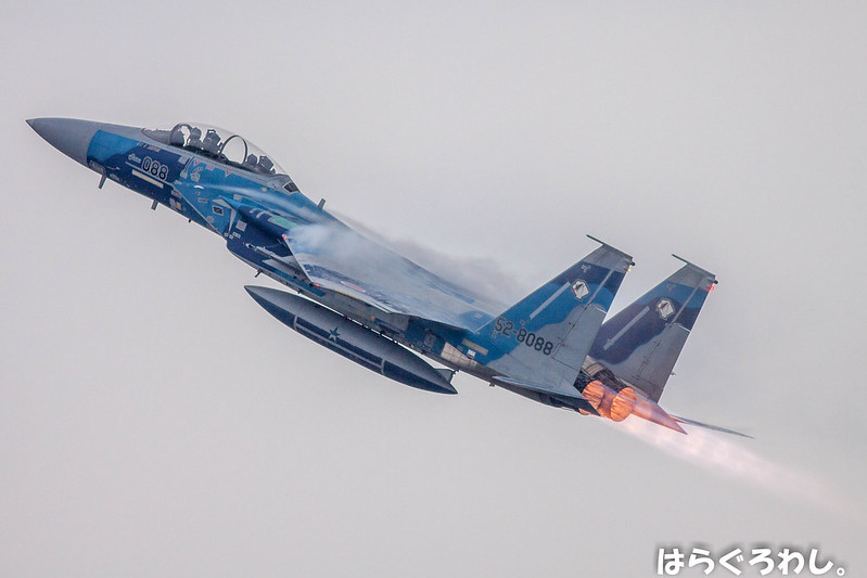 AGGRESSOR F-15DJ #52-8088 @ Miyazaki Nyutabaru A.B.
