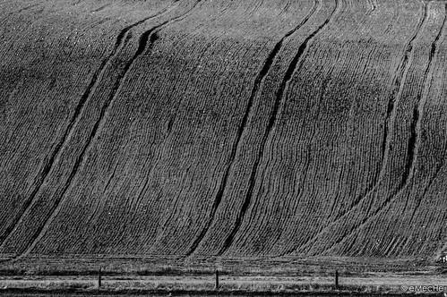 campo arado - la piel sensible by eMecHe