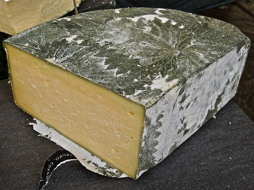 Delicious Cornish Yarg Cheese, Wrapped in Nettle Leaves by Irene.B.