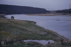 PFA (piles of fly ash) advances across lagoon, East Aberthaw, view from sea wall, October 1982