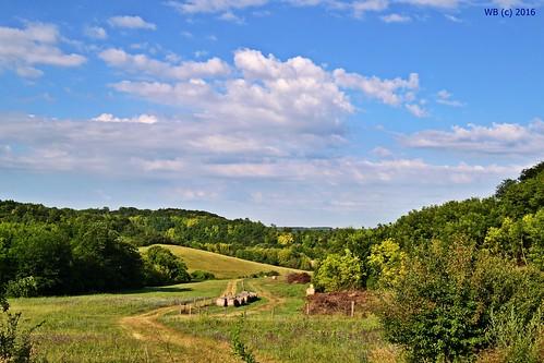 landscape tájkép landschaft sommer summer nyár mező field hills dombok dombság green sky blue tolna trees clud wolke felhő