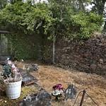Exhumación As Covas (Lugo)