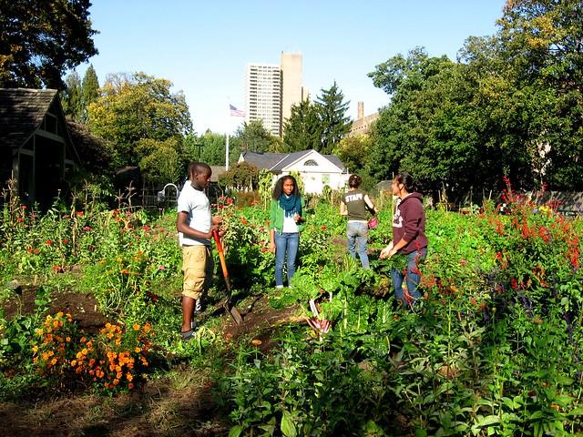 Landscape Gardening Apprenticeships : Garden apprentice program brooklyn botanic