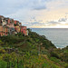 The Village, the Vineyards and the Sea (Corniglia in Cinque Terre, Italy)