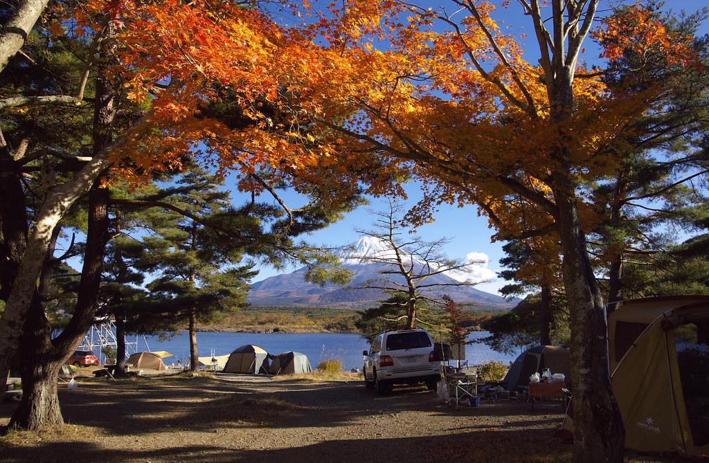 精進湖キャンピングコテージ テントサイト