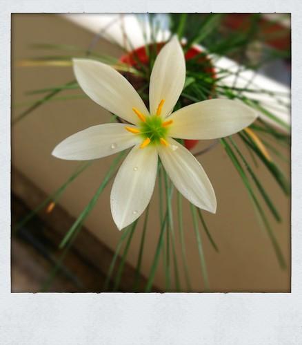 Photo 10-11-12 10 08 07 AM