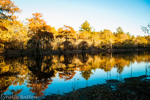 Satilla River Fishing November 2012