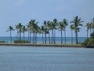 Imagen de los Cayos de Florida