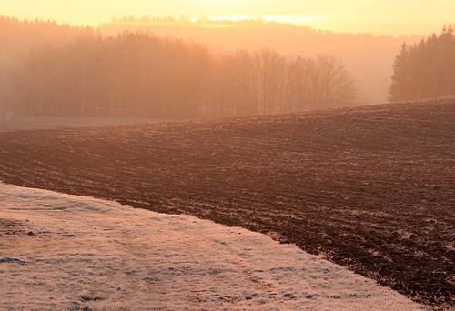 pink sun mist field sunrise germany dawn village hoarfrost thuringia soil schackendorf rauhreif